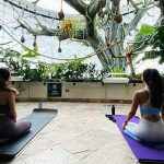 """Experience a Yoga class in the """"rainforest"""""""
